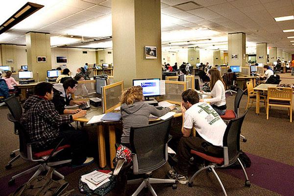 Drive employee development through social learning